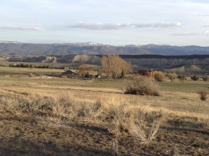 Cottonwood Ranch and Kennel, Sunrise
