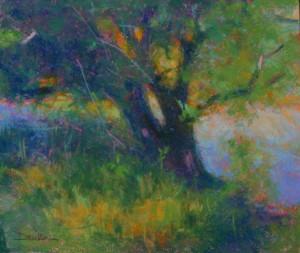 Willow Study, Doug Dawson